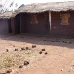 Dry Season Model Village6