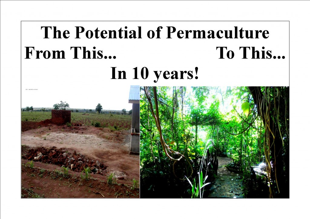 Permaculture Potential