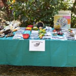 2015 Open Day 092