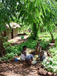 Maulana Village, near Chitedze