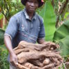 Never Ending Food's Permaculture Manager, Peter Kaniye, holding a 21.8 kg local yam dug out of the ground in the midst of Malawi's 'hungry season'.